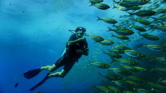 Certification Course Adventure Diver