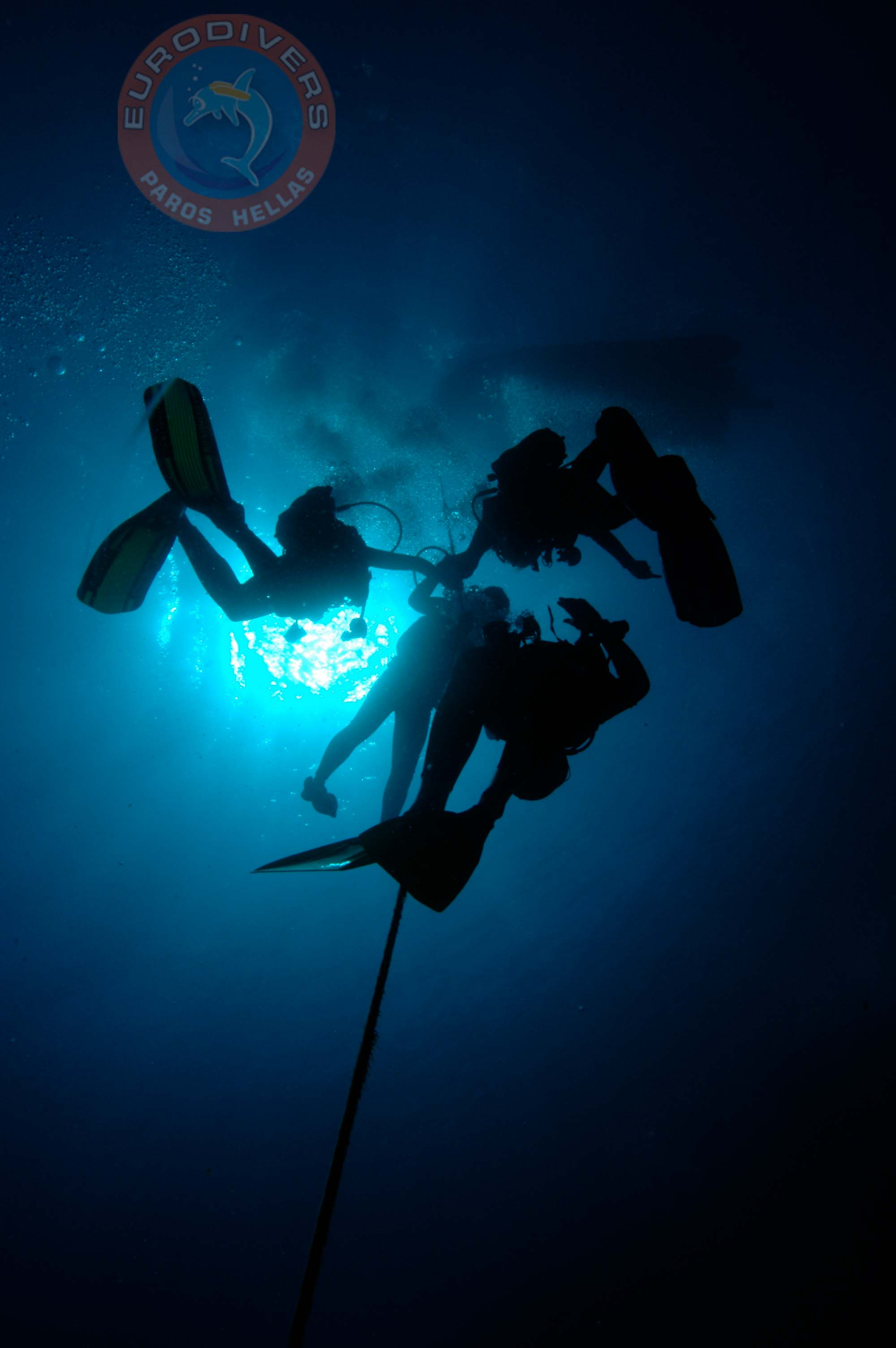 Specialty Course Deep Diver